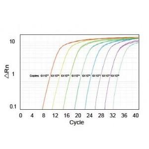 LiQuant™ Universal Green qPCR Master Mix (125 rxn)