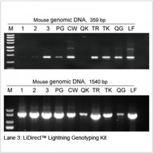 LiDirect™ Lightning Genotyping Kit (400 rxns)