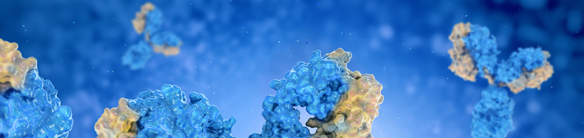 homepage-slide-KO-KD-Validated-Antibodies